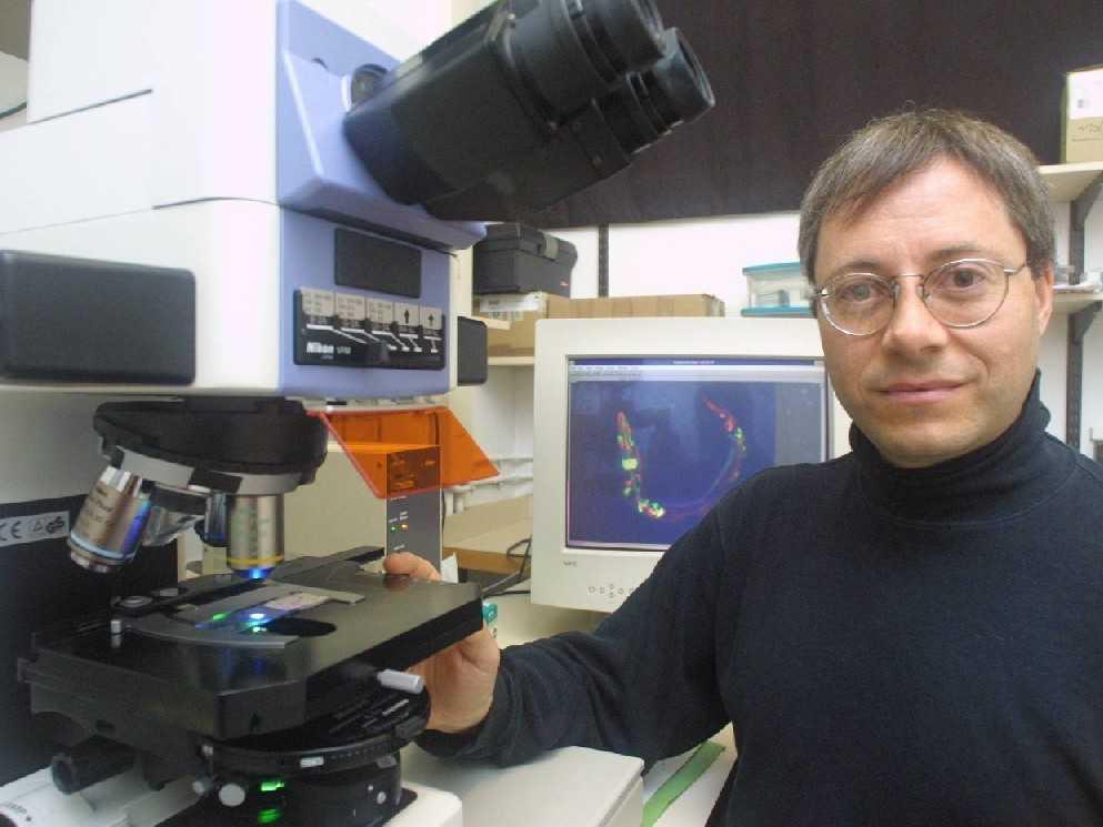Benjamin Podbilewicz