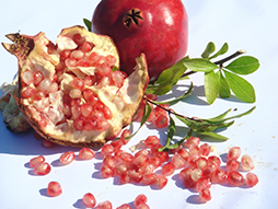 Pomegranate Juice Helps Dialysis Patients