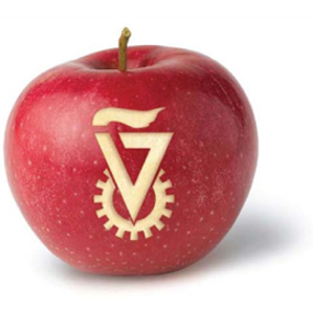Technion and the Big Apple