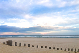 shore.jpg